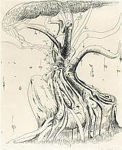 BRETT WHITELEY 1939-1992 Moreton Bay Fig (1979) etching on paper