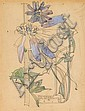 * CHARLES RENNIE MACKINTOSH (SCOTTISH 1868-1928) 'CHICKORY' 24.5 x 19cm (9 3/4 x 7¾in)