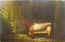 19TH CENTURY BRITISH SCHOOL BULLOCK IN A BARN STALL 40cm x 61cm (15.75in x 24in)