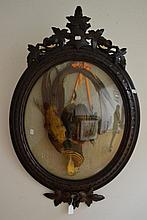 Antique oval convex framed taxidermy pheasant,