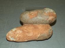 Two Very Rare and Unusual Dinosaur Eggs