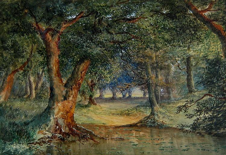 Augustus Pell Burnham Beeches - Buckinghamshire