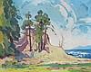 Mildred Valley Thornton B.C. Coastal Landscape