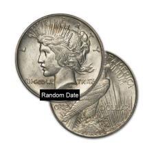 Peace Silver Dollar Coin - Random date - Average Circulated